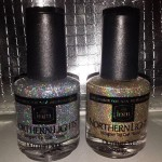Nothern Lights Top Coat Silver and Gold
